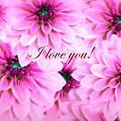 Gorgeous Pink Dahlias With Love  by hurmerinta