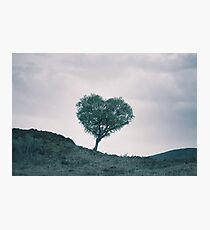 The Heart Of Scotland by Cat Burton Photographic Print