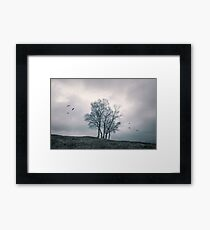 A Dance With Nature by Cat Burton Framed Print