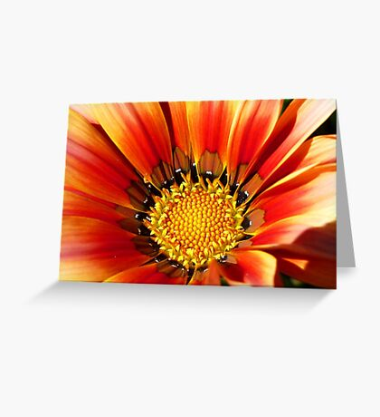 """""""Bee's delight"""" Greeting Card"""