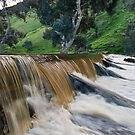 Marne River ford by Dave  Hartley