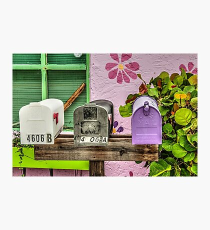 You've Got Snail Mail!  Photographic Print