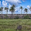 Abandoned resort by Ted Petrovits