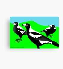 Magpies Canvas Print