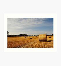 Hay Bales in Donegal Art Print