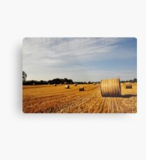 Hay Bales in Donegal Metal Print