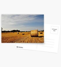 Hay Bales in Donegal Postcards