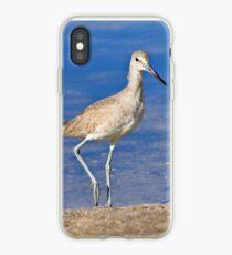 Willet Bird iPhone Case