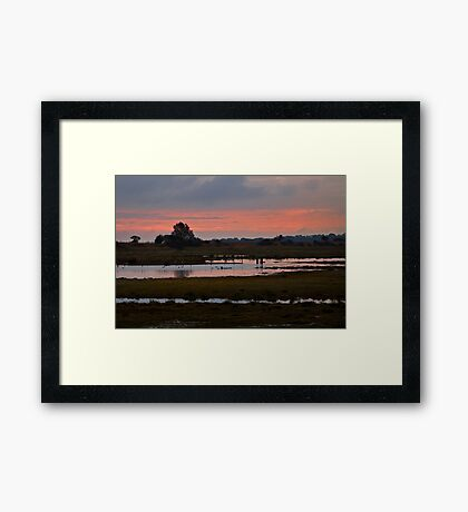 Wetlands at Dusk Framed Print