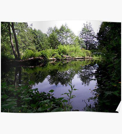 Acorn Bank Gardens Secret Lake Poster