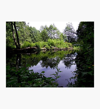 Acorn Bank Gardens Secret Lake Photographic Print