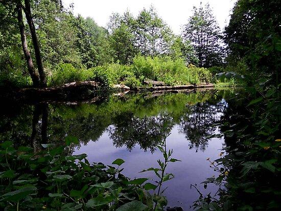 Acorn Bank Gardens Secret Lake by Julesrules