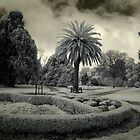 Colac Botanic Gardens by lightsmith