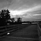 Bridge in the Sun by Teresa Young