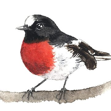 Scarlet Robin by desines