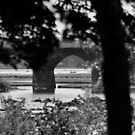Rockville Bridge in Black & White by Corkle