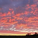 Sunrise Over Farm Fields  by utilityimage