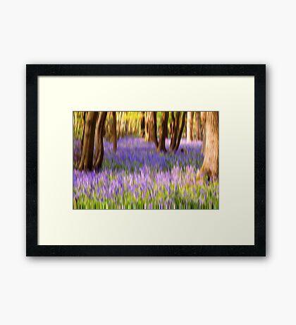 Blurbell Woods Framed Print
