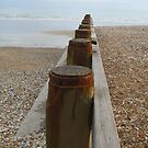 Pilings - Eastbourne by BlackhawkRogue