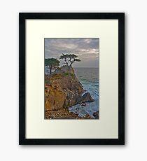 Lone Cypress, Monterey California Framed Print