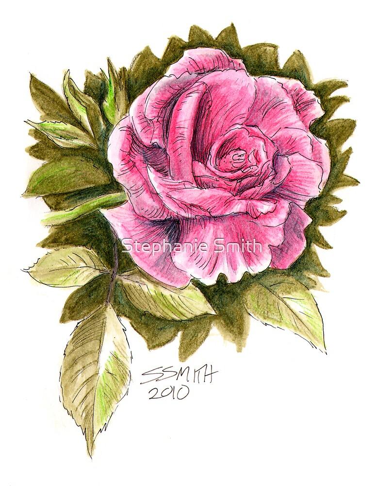 Pink Rose by Stephanie Smith