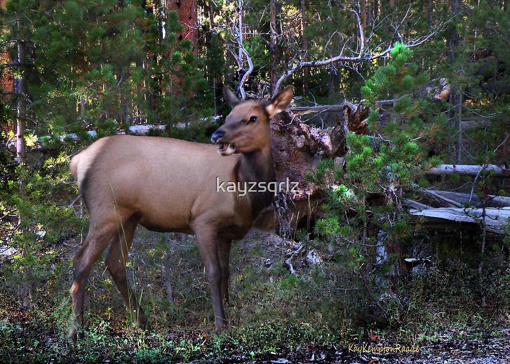 Like My Antlers? by kayzsqrlz