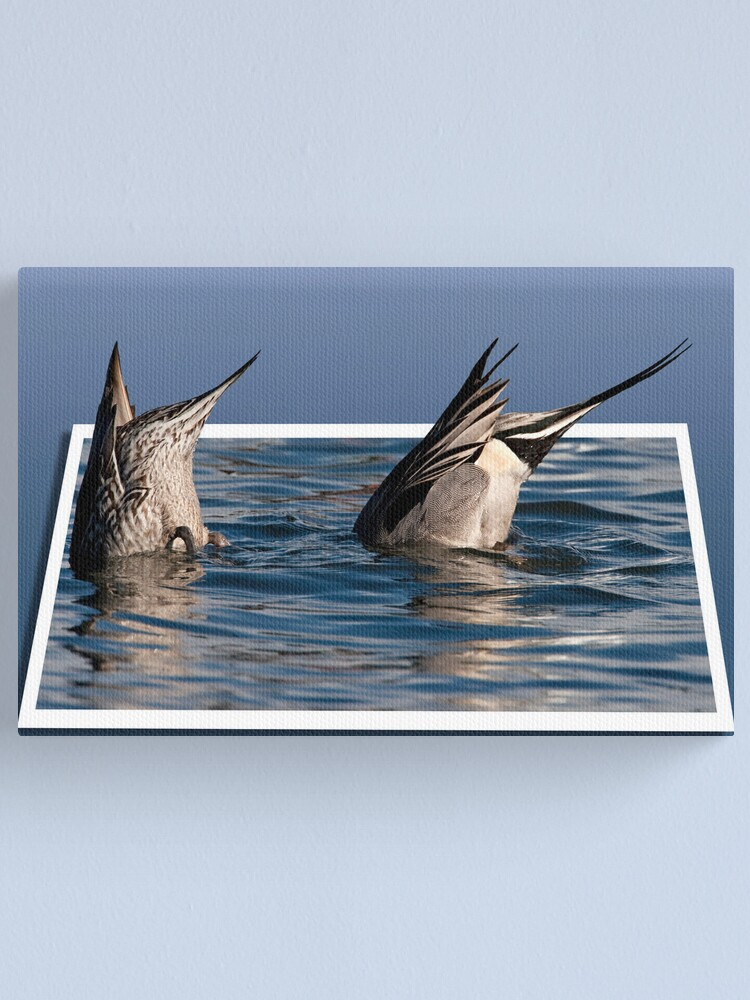 Alternate view of Ducked Canvas Print