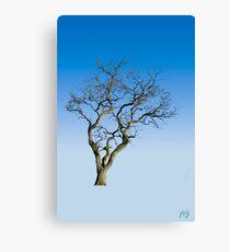 Wire Tree Canvas Print