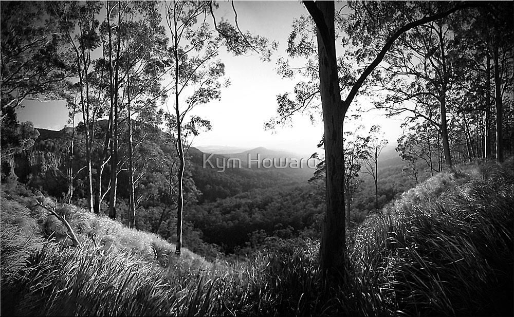 Valley View by Kym Howard
