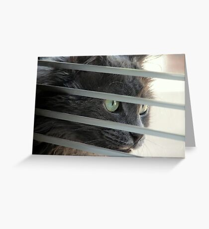 Behind The Mini Blinds Greeting Card
