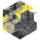 Honeycombed Wald von Jess de Mol-Ware