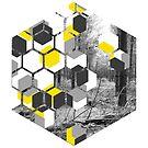 Kuboide Illusionen von Jess de Mol-Ware