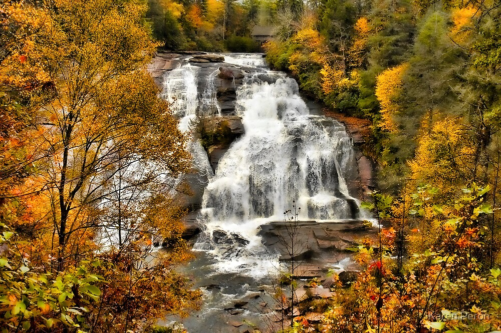 High Falls - Dupont State Forest  by Karen Peron
