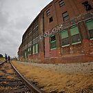 Walkin' the Tracks by Ann Rodriquez