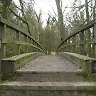 Stepping Stones Footbridge - Boxhill, Surrey by BlackhawkRogue