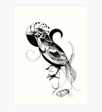 This is not a Raven... Art Print
