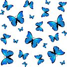 Blue butterflies print by rlnielsen4