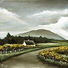Connemara cottage by tanyabond