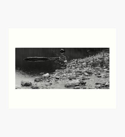 Loch Scammadale (Mono) Art Print