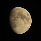 the moon by Cheryl Dunning