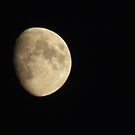 the moon 2 by Cheryl Dunning