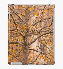 Uni Tree iPad Case/Skin