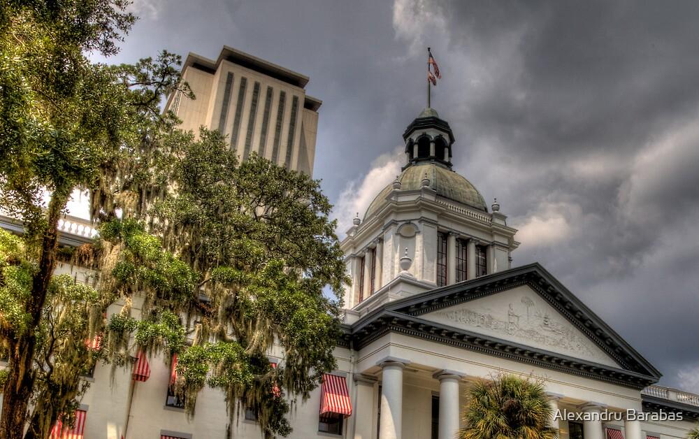 Florida State Capitol - Crop by Alexandru Barabas