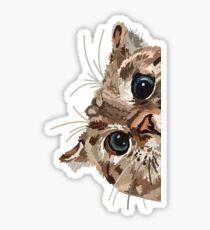 Spähende Katze Glänzender Sticker