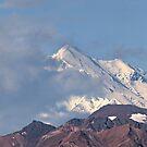 Denali and Polychrome Mountains. by Alex Preiss