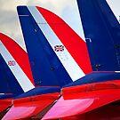 Red Fins by Stuart Robertson Reynolds