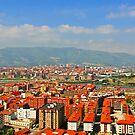 Vista de Erandio - Bilbao, Basque Country by DavidGutierrez