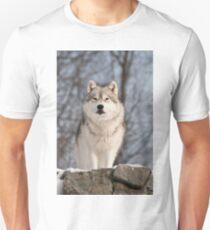 Investigation T-Shirt