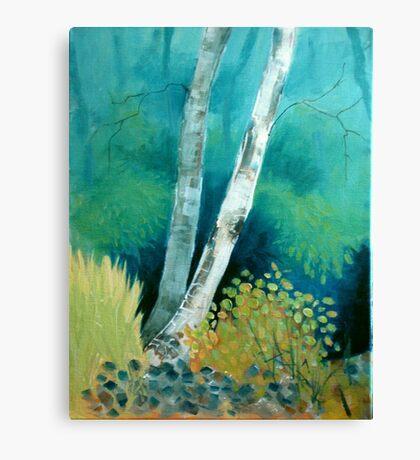 Silver treasure Canvas Print