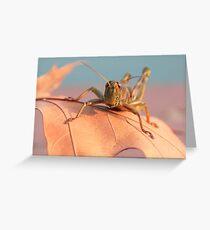 Hoppy Greeting Card